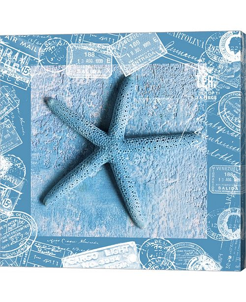 Metaverse Starfish by andrea Haase Canvas Art