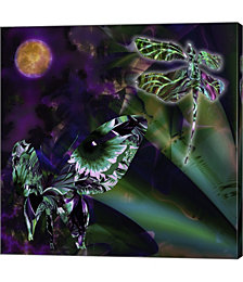 Night Safari by Mindy Sommers Canvas Art
