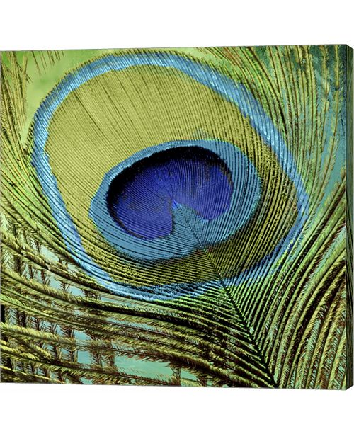 Metaverse Peacock Candy V by Color Bakery Canvas Art