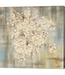 White Cherry Blossom I by Li Bo Canvas Art