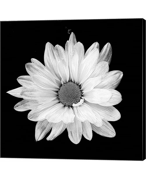 Metaverse White Daisy I by Gail Peck Canvas Art