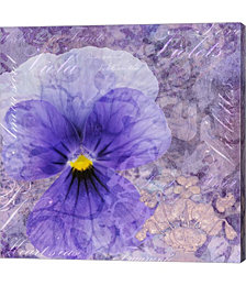 Viola - Secret Love by Cora Niele Canvas Art