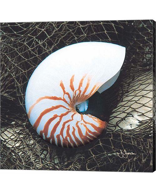 Metaverse Nautilus With Net by John Jones Canvas Art