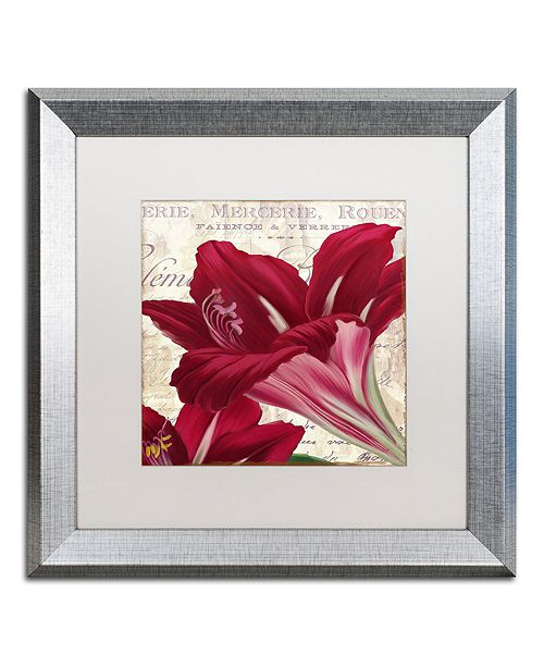 "Trademark Global Color Bakery 'Amaryllis ' Matted Framed Art, 16"" x 16"""