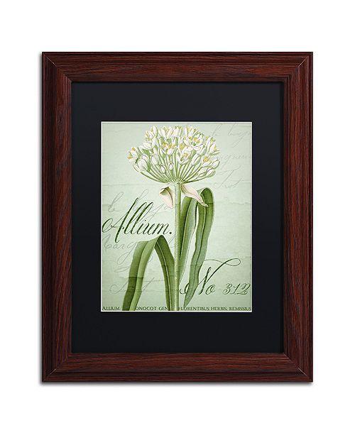 "Trademark Global Color Bakery 'Allium I' Matted Framed Art, 11"" x 14"""