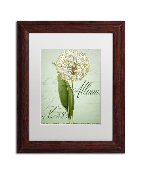 "Trademark Global Color Bakery 'Allium Ii' Matted Framed Art, 11"" x 14"""