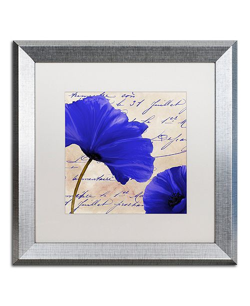 """Trademark Global Color Bakery 'Coquelicots Bleues Ii' Matted Framed Art, 16"""" x 16"""""""