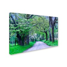"Michael Blanchette Photography 'Cades Cove Lane' Canvas Art, 12"" x 19"""