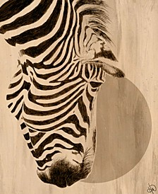"Moon Zebra 24"" X 36"" Canvas Wall Art Print"