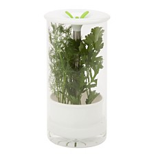 Honey Can Do Glass Herb Preserver