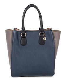Céline Dion Collection Leather Adagio Satchel