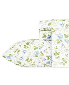 Laura Ashley Core Spring Bloom Multi Blue Queen Flannel Sheet Set