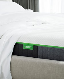 "Carihola 10"" Charcoal Memory Foam, Quick Ship, Mattress in a Box - Twin Extra Long"