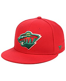 Minnesota Wild Basic Fan Fitted Cap