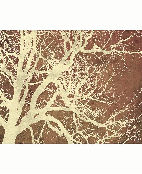 "Creative Gallery Tree Silhouette on Brown 24"" x 36"" Acrylic Wall Art Print"