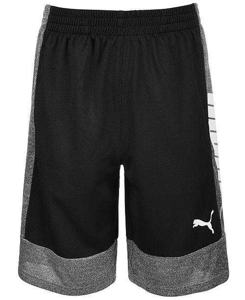 Puma Big Boys Colorblocked Shorts