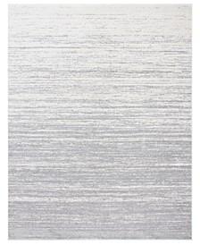 Adirondack Light Gray and Gray 8' x 10' Area Rug