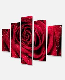 """Designart Red Rose Petals With Rain Droplets Floral Art Canvas Print - 60"""" X 32"""" - 5 Panels"""