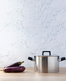 Ron 6.8 Qt. Stainless Steel Covered Stockpot