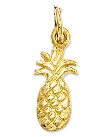14k Gold Charm, Polished Pineapple Charm