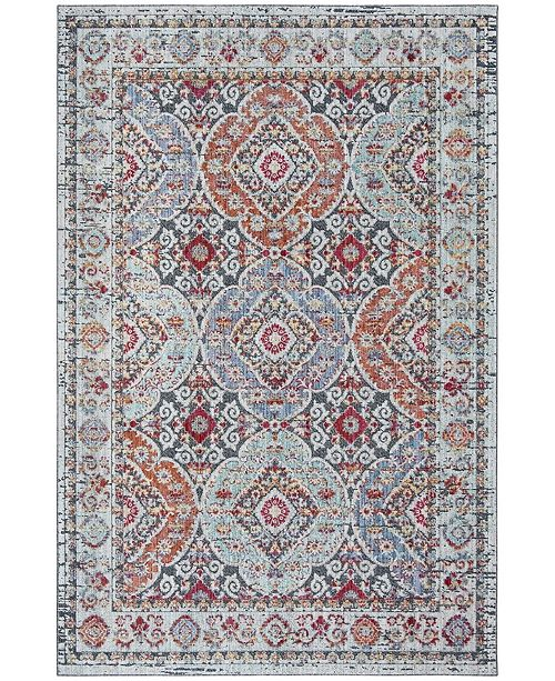 Safavieh Provance Light Gray and Black 4' x 6' Area Rug