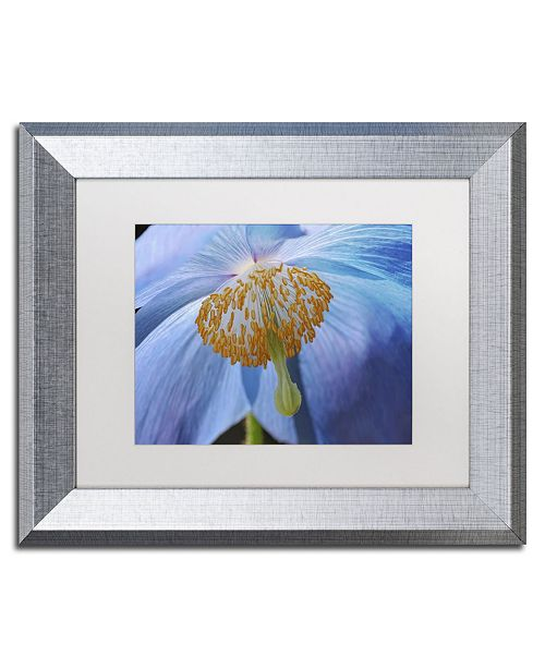 "Trademark Global Cora Niele 'Blue Poppy' Matted Framed Art - 14"" x 11"" x 0.5"""