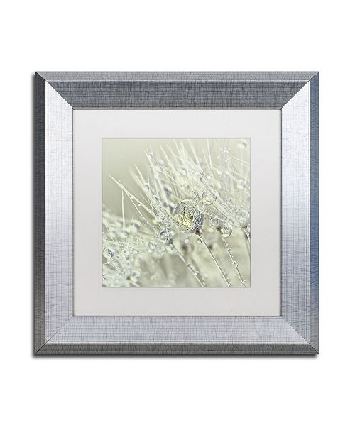"Trademark Global Cora Niele 'Dandelion Dew III' Matted Framed Art - 11"" x 11"" x 0.5"""