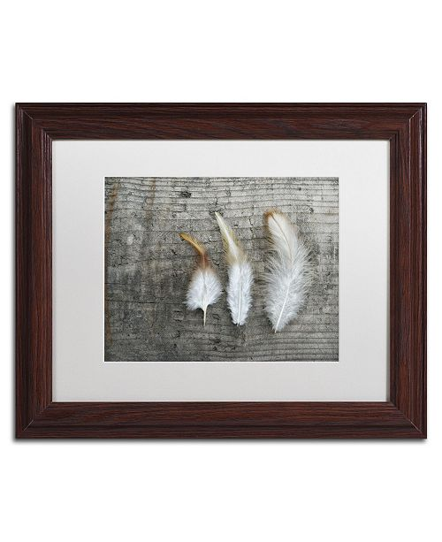 "Trademark Global Cora Niele 'Three Feathers on Wood' Matted Framed Art - 14"" x 11"" x 0.5"""