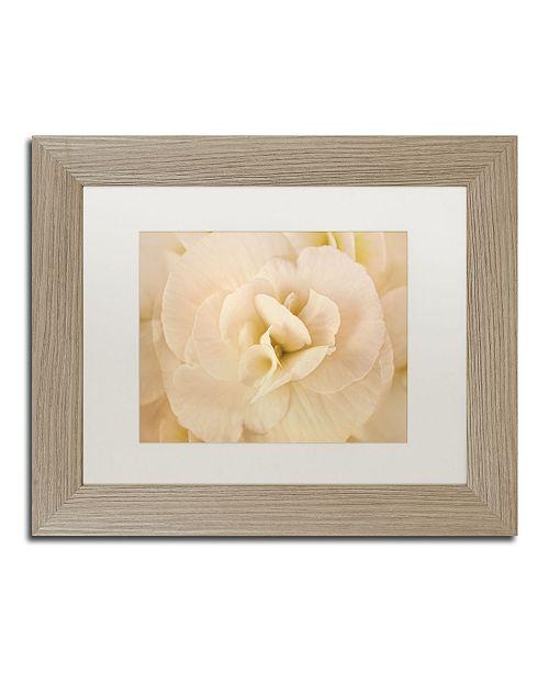 "Trademark Global Cora Niele 'Amber Begonia Flower' Matted Framed Art - 14"" x 11"" x 0.5"""