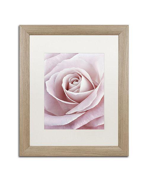 "Trademark Global Cora Niele 'Pink Rose' Matted Framed Art - 20"" x 16"" x 0.5"""