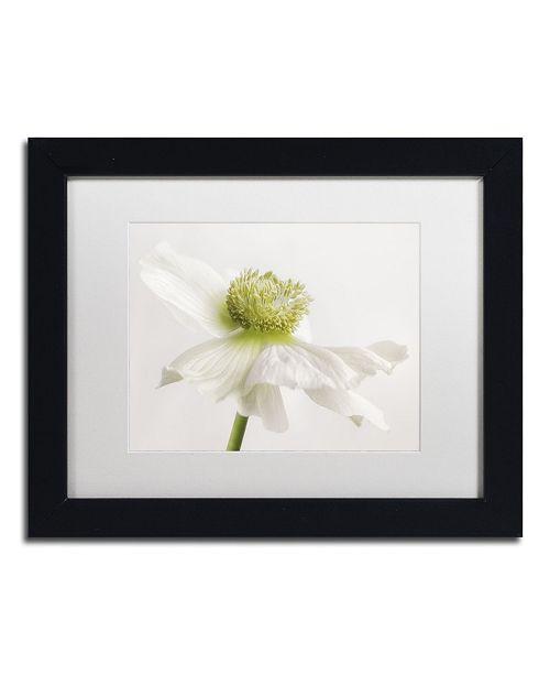 "Trademark Global Cora Niele 'White Anemone Flower' Matted Framed Art - 11"" x 14"" x 0.5"""