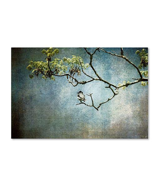 "Trademark Global Jai Johnson 'Lucky Bird' Canvas Art - 19"" x 12"" x 2"""