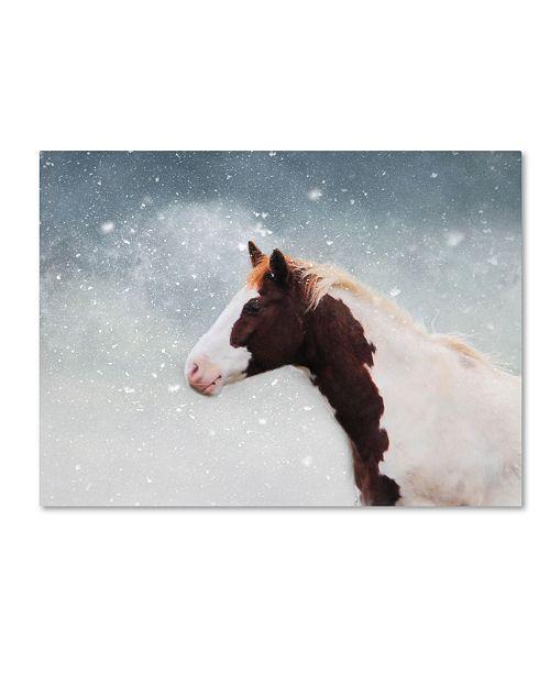 "Trademark Global Jai Johnson 'Paint Horse In The Snow' Canvas Art - 19"" x 14"" x 2"""