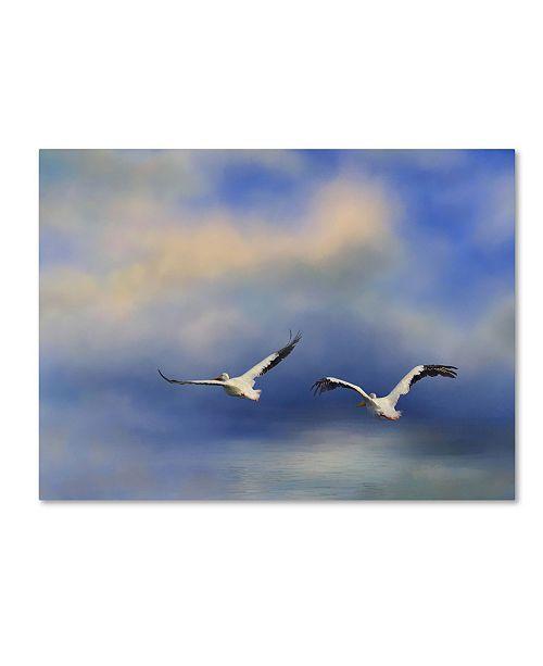 "Trademark Global Jai Johnson 'Pelicans At Sea' Canvas Art - 32"" x 24"" x 2"""