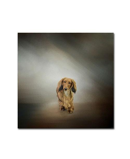 "Trademark Global Jai Johnson 'It's Showtime Baby Red Dachshund Dog' Canvas Art - 18"" x 18"" x 2"""