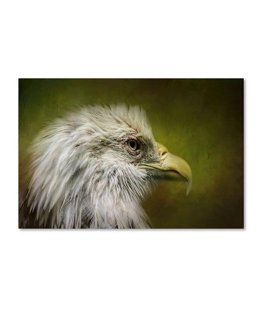 "Trademark Global Jai Johnson 'Bald Eagle In The Grove' Canvas Art - 24"" x 16"" x 2"""