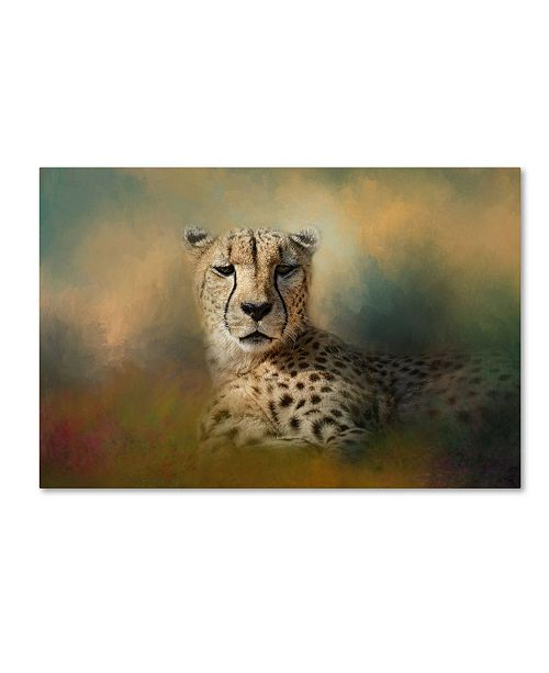 "Trademark Global Jai Johnson 'Cheetah Enjoying A Summer Day' Canvas Art - 47"" x 30"" x 2"""