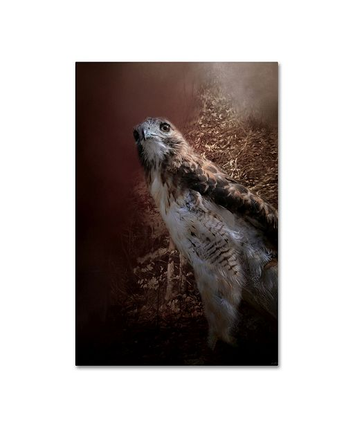 "Trademark Global Jai Johnson 'Chickasaw Redtail' Canvas Art - 24"" x 16"" x 2"""