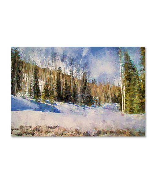 "Trademark Global Jai Johnson 'Colorado Color Splash 3' Canvas Art - 47"" x 30"" x 2"""