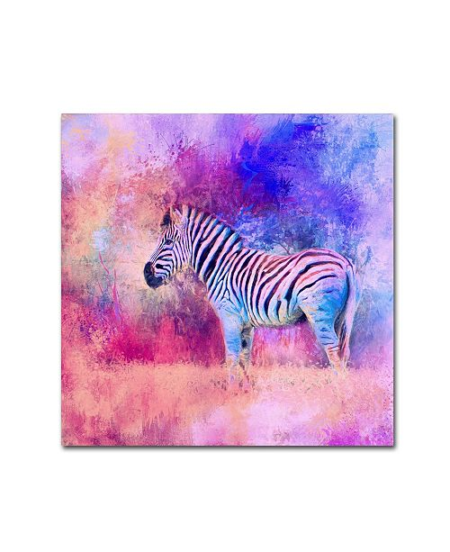 "Trademark Global Jai Johnson 'Jazzy Zebra Pink And Purple' Canvas Art - 35"" x 35"" x 2"""