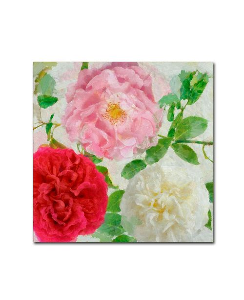"Trademark Global Cora Niele 'Peonies And Roses Iii' Canvas Art - 24"" x 24"" x 2"""
