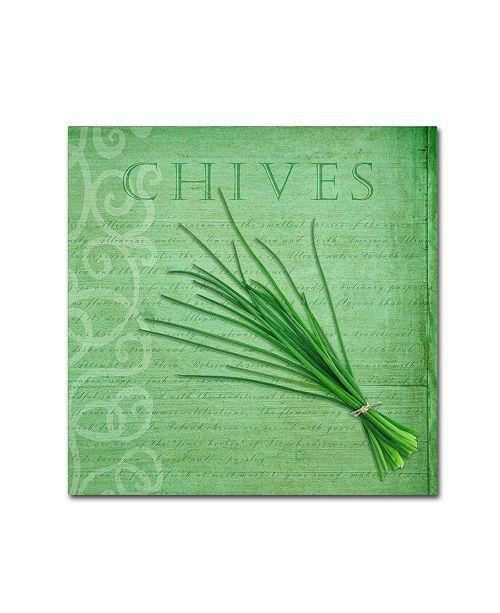 "Trademark Global Cora Niele 'Classic Herbs Chives' Canvas Art - 24"" x 24"" x 2"""