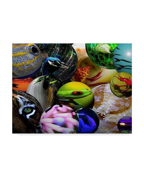 "Trademark Global Dana Brett Munach 'Life on Earth' Canvas Art - 19"" x 14"" x 2"""