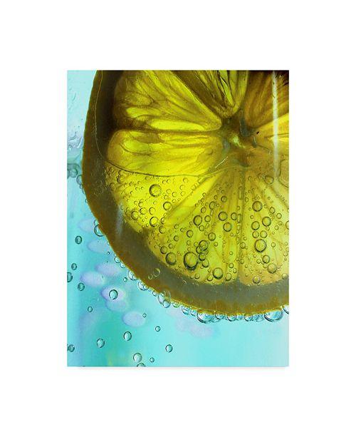 "Trademark Global Dana Brett Munach 'Lemon Wheel' Canvas Art - 24"" x 18"" x 2"""