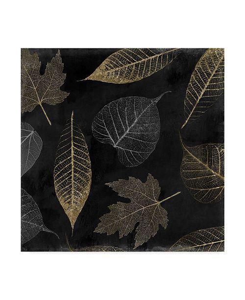"Trademark Global Color Bakery 'Autumn Gold Black Background' Canvas Art - 18"" x 18"" x 2"""