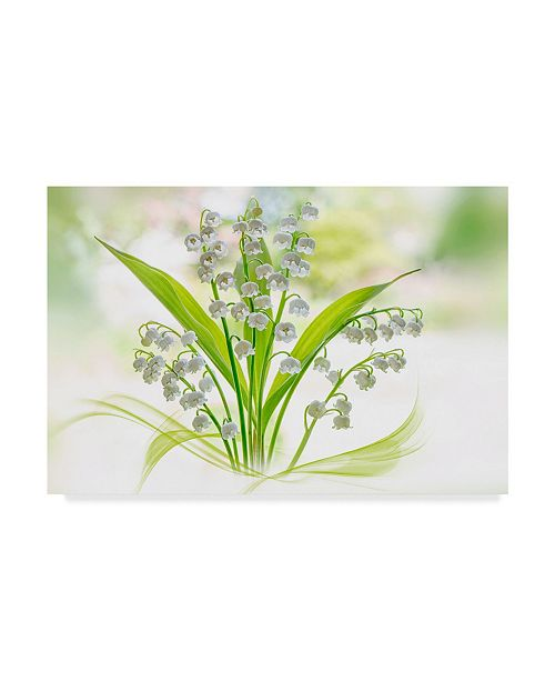 "Trademark Global Jacky Parker 'Green Lily Of The Valley' Canvas Art - 24"" x 2"" x 16"""