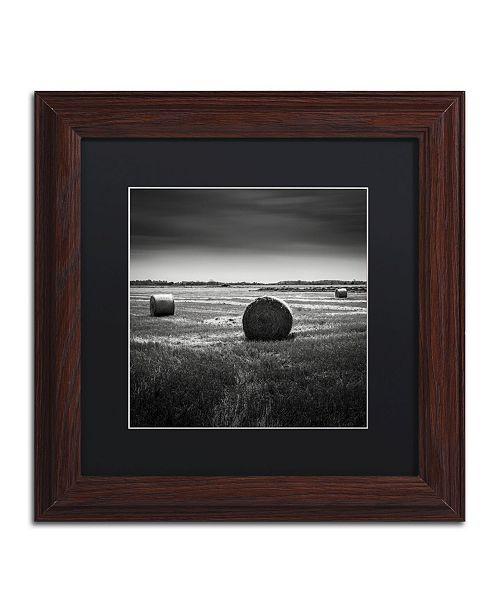 """Trademark Global Dave MacVicar 'Rural' Matted Framed Art - 11"""" x 11"""" x 0.5"""""""