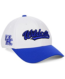 Kentucky Wildcats Tailsweep Flex Stretch Fitted Cap