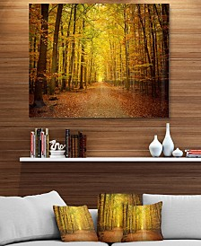 """Designart 'Pathway In Green Autumn Forest' Photography Metal Wall Art - 40"""" X 30"""""""