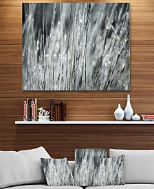 "Designart 'Raindrops On Grass Black White' Oversized Landscape Metal Wall Art - 40"" X 30"""